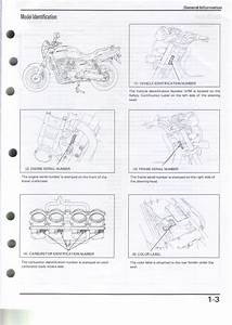 Wiring Diagram  30 Kubota Alternator Wiring Diagram