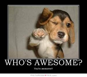 Youre Awesome D... Awesome Thanks Quotes