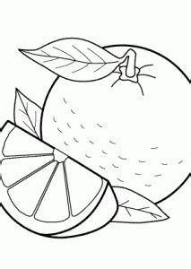 orange fruits coloring pages  kids printable