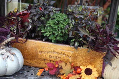 seasonal geerlings garden center