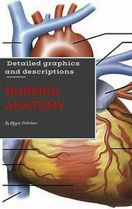 Nursing Anatomy  U0026 Physiology By John Thuko - Book