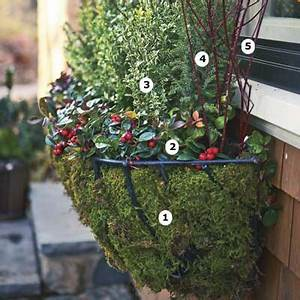 7 best Window box ideas images on Pinterest