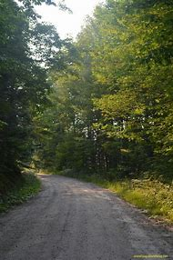 Vermont Fall Road in Country