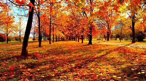 Autumn Season Hd Wallpapers by Wallpaper Fall Season 183 Wallpapertag