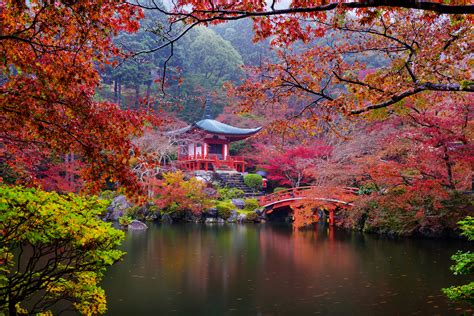 autumn japanese garden  retina ultra hd wallpaper