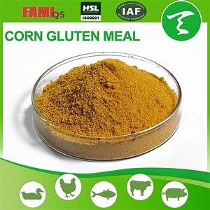 Yellow Corn Gluten Powder For Animal - Buy Corn Gluten ...