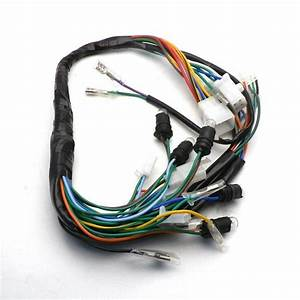 Diagram  Chinese Gy6 150cc Wire Harness Wiring Assembly