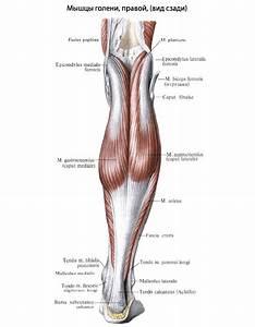 От чего боли в суставах ног