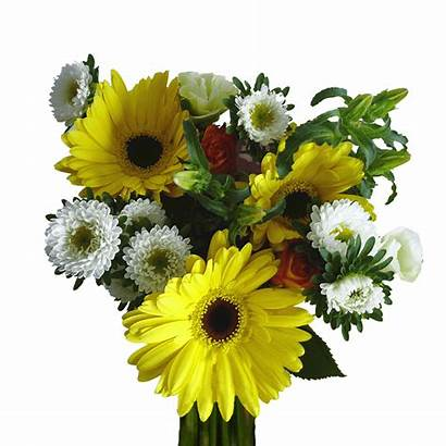 Birthday Bouquets Flowers Delivery Delight Assorted Globalrose