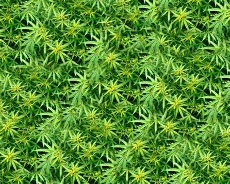 Marijuana Backgrounds Wallpapers Desktop Wallpaper Cave