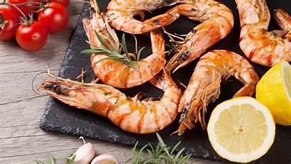 Shrimp 4k Facts Creole Cafe Baltana Wallpapers