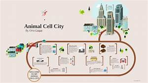 Cell City Cell Diagram