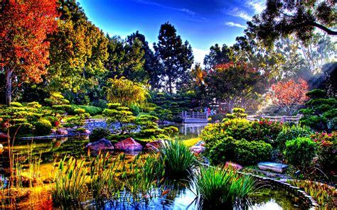 colorful nature   sun rays japanese garden wallpaper
