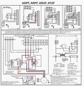 Defrost Board Wiring Diagram from tse1.mm.bing.net