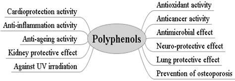polyphenols   bodies    ways  bad skin