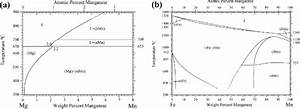 Phase Diagram For The System  A  Mg