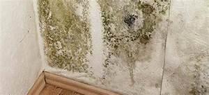 Nettoyer Mur Exterieur Bicarbonate : nettoyer les moisissures sur un mur rem des de grand m re ~ Melissatoandfro.com Idées de Décoration