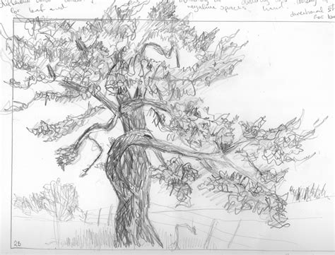 Project Drawing Trees Page 97 Adrian510434