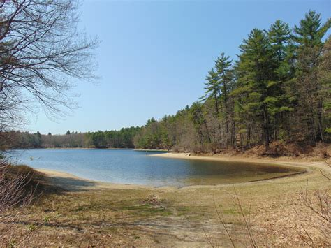 climate change and recreational activities at walden pond altered its ecosystem