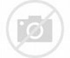長洲地震 - 新聞 - am730