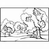 Coloring Stream Trees Landscapes Pages Template Printable 7kb 300px sketch template