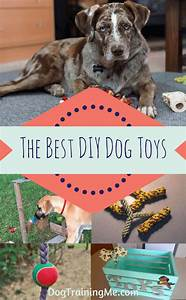 homemade dog chew toys for aggressive chewers wow blog With best dog chews for heavy chewers