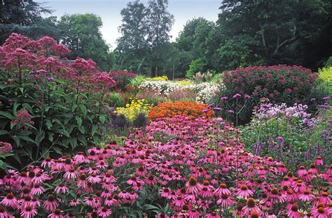 Garden Of Flowers by Some Plants For A Prairie Planting