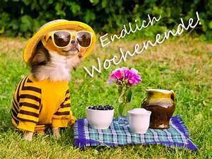 Feierabend Und Wochenende : endlich wochenende lustige spr che gifs f r whatsapp und facebook netzwelt ~ Orissabook.com Haus und Dekorationen