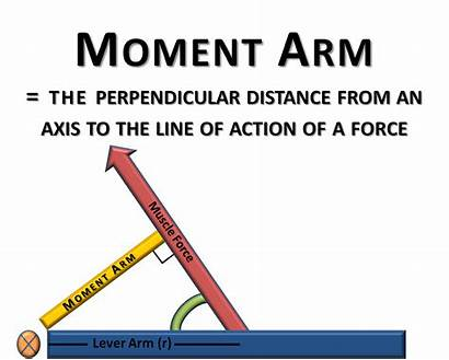 Moment Arm Torque Biomechanics Force System Lever