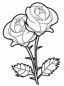 Desenhos para pintar de rosas. Desenhos para colorir de rosas