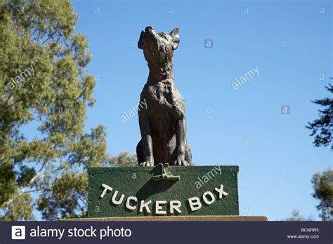statue  dog stock  statue  dog stock images