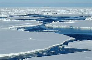 Arctic sea ice could 'shrink to record low' this summer ...