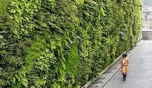 An, Architect, U0026, 39, S, Guide, To, Green, Walls