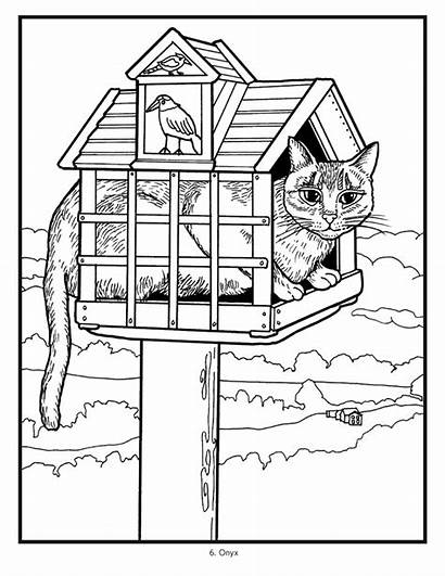 Coloring Cats Mimi Olsen Vang Cat Pages