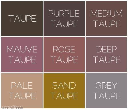 taupe color wheel best 25 taupe ideas on taupe color schemes