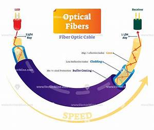 Optical Fibers Cross Section Labeled Diagram Vector