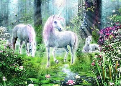 Unicorn Unicorns Fantasy Paradise Forest Jigsaw Wallpapers