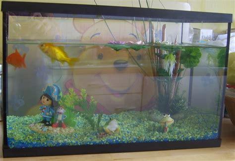 poissons et tortues au jardin forum de jardinage