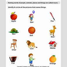 Identify Thing Nouns Worksheet  Turtle Diary