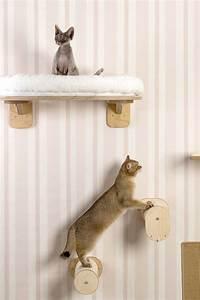 die besten 17 ideen zu katzen kletterwand auf pinterest With balkon teppich mit wenn katzen an tapeten kratzen