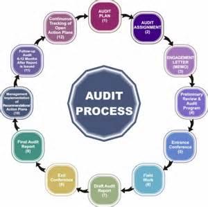 Internal Audit Process Graphics