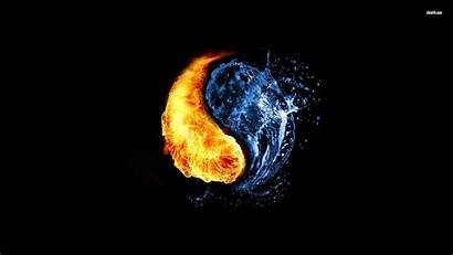 Fire Water Yang Yin Background Abstract Wolf