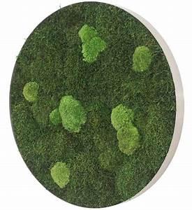 Vertikaler Garten Kaufen : moosbild selber machen beautiful moosbild selber machen pictures freund gmbh moosgreen ~ Watch28wear.com Haus und Dekorationen