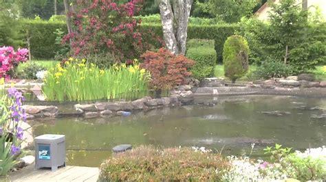 Le Superbe Bassin De Jardin D'alain Youtube