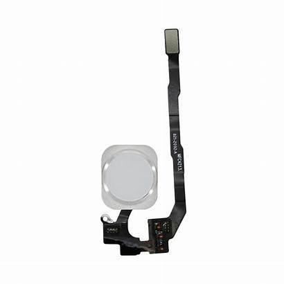 Button Iphone 5s Silver Assembly Se Flex