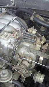 Throttle Body Vacuum Port