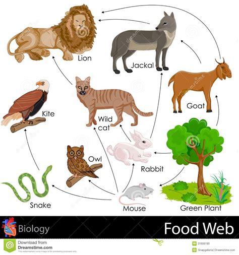 cuisine du web alimentaria stock de ilustración imagen de gato