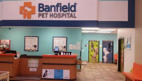 Banfield Pet Hospital® Location At 26761 Ceramic Art Pens Hair Framed Mediums Synonym And Paintings Of India Art.com Canvas Prints Surface Health For Sale Uk Letter Meaning