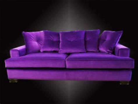 canape violet photos canapé violet