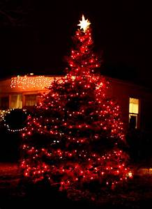 red and white christmas tree lights Decoratingspecial com